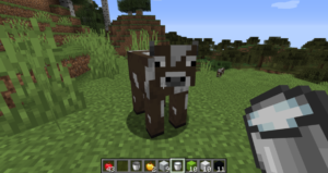 How To Get Milk In Minecraft